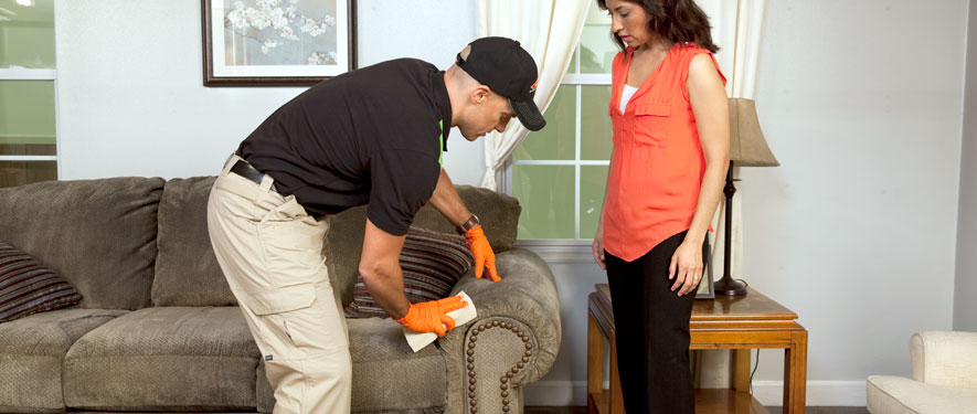 Santa Cruz, CA carpet upholstery cleaning